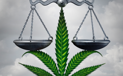 Legalna marihuana