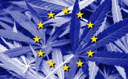 Marihuana w uni europejskiej