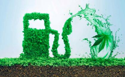 Biopaliwa z konopi