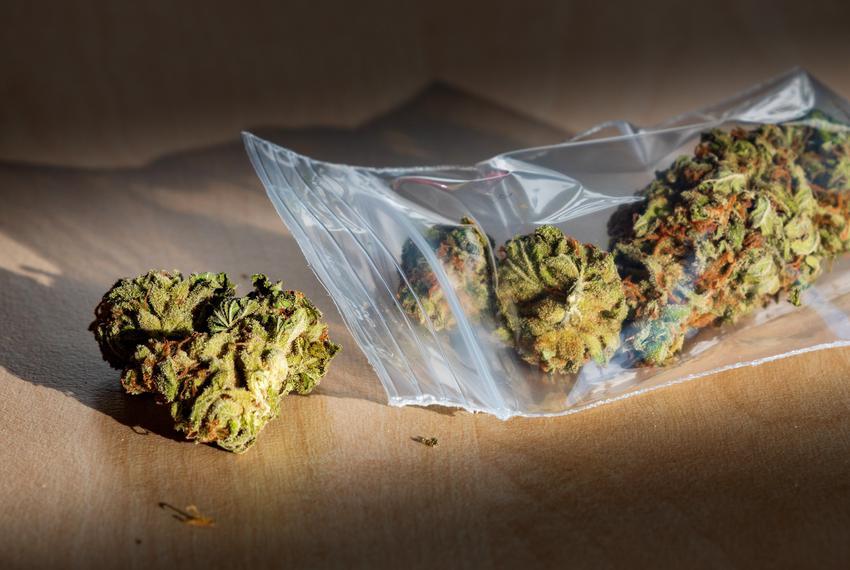 wygląd marihuany w opakowaniu