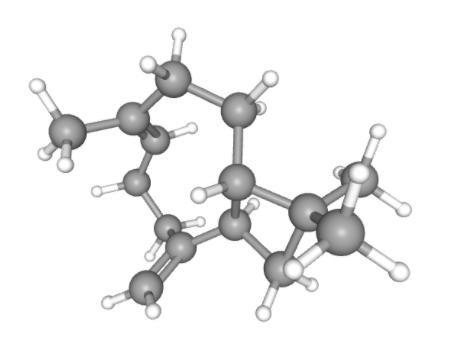 Beta - kariofilen - cząsteczka związku