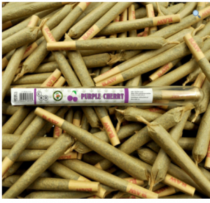 Joint CBD 10% - 1 g Purple Cherry