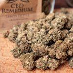 Susz konopny z CBD 17.4% - 1g Remedium Lemon Zkittle