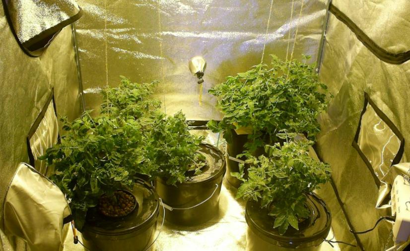 Gotowy growbox robiony ręcznie w domu