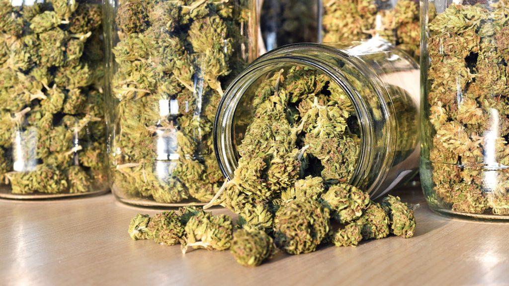 Curring - marihuana w słoiku
